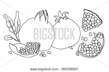 A Set Of Contour Vector Illustrations With Whole Pomegranates And Pieces Of Pomegranates.