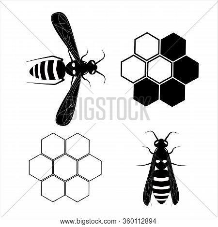 Flying Wasp. Honey Bee. Botany Illustration. Insect Animal, Exotic. Vector Isolated On White Backdro
