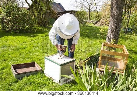 A Bee Hive Box Being Smoked To Calm The Worker Bees And Encourage Them To Move Away From The Open Hi