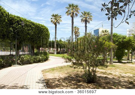 Gardens Walkway In Waterfront Oasis Park El Kantaoui Sousse Tunisia Africa