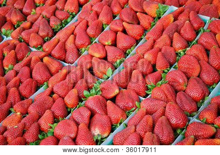 Strawberries at a farmers' market