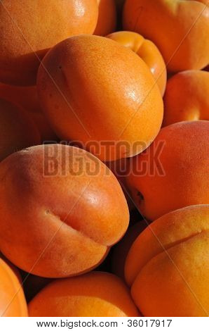 Apricots at a farmers' market
