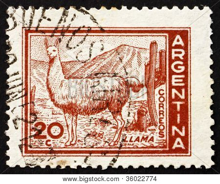 Postage stamp Argentina 1961 Llama
