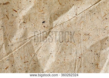 Vintage Grunge Textures Of Paper, Cardboard, Recyclables With Various Blades Of Grass, Small Inclusi