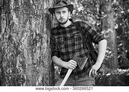 Handsome Man With Axe. Handsome Man Lumberjack With A Large Ax Examines The Tree Before Felling. Str