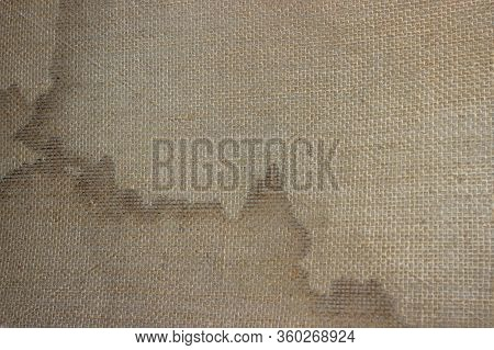 Loose Fabric On The Underside Of The Carpet. Professional Carpet Stain Removal. Dry Cleaning Of Carp