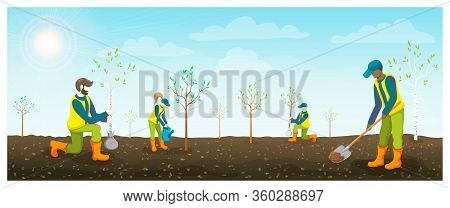 People Planting Trees In Brown Fertile Soil. Horizontal Vector Flat Illustration. Teenagers Or Volun