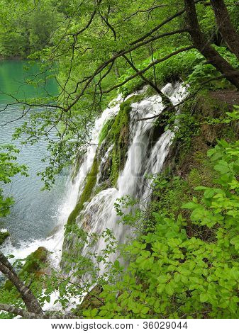 Waterfall In Plitvice National Park