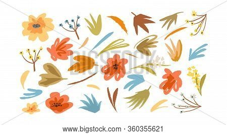 Blooming Flowers Floral Collection Vintage Graphic Set For Decoration And Design Isolated On White B