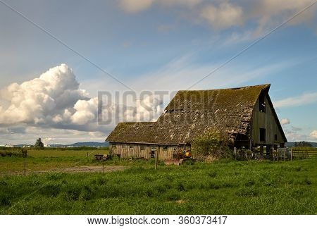 Pacific Northwest Rustic Barn. A Weathered Barn Collapsing In The Pacific Northwest. United States.