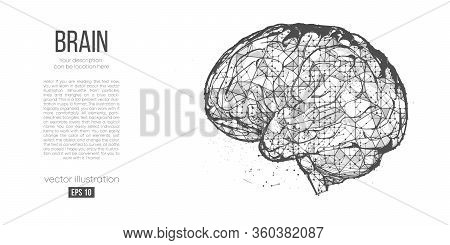 Abstract Silhouette Of The Polygonal Head, Brain On White Background. Process Of Human Thinking. Res