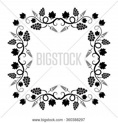Vector Square Shape Background Decoration Of Grape Vine With Copyspace. Black Grapevine Illustration