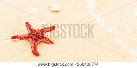 Red Starfish Is On A Beach Sand Close Up. Starfish Is In The Sea Waves. Sea Concept. Background Hori