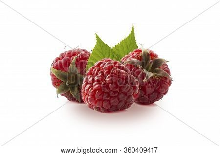 Raspberries Isolated On White Background. Three Ripe Raspberries Close-up. Raspberry With Copy Space
