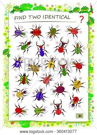 Logic Puzzle Game For Children And Adults. Find Two Identical Bugs. Printable Page For Kids Brain Te