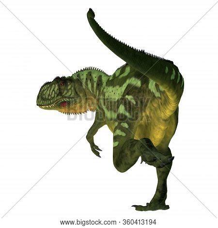 Yangchuanosaurus Dinosaur Tail 3d Illustration - Yangchuanosaurus Was A Carnivorous Theropod Dinosau