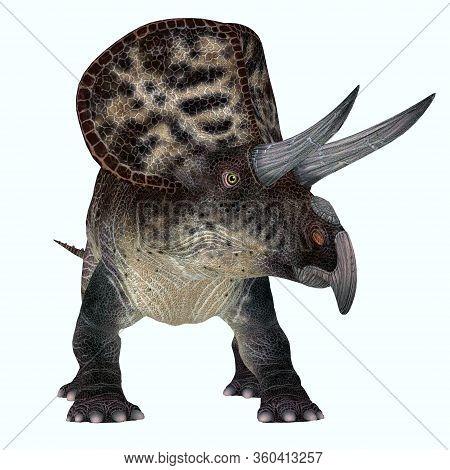Zuniceratops Dinosaur Over White 3d Illustration - Zuniceratops Was A Herbivorous Ceratopsian Dinosa