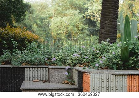 Marble Rock Made Steps And Staircases Park Bench Of A Public Park Decorated With Flower Plants. Fron