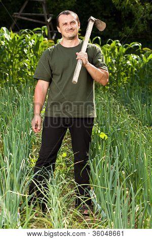 Gardener In An Onion Field, Weeding
