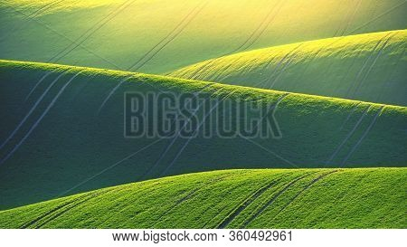 Beautiful Spring Landscape With Field Of Grass Hills At Sunset. Waves In Nature Moravian Tuscany - C