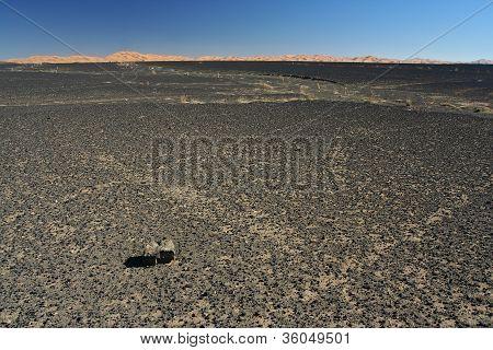 Stone Desert - Hamada