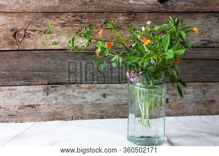 Meadow Natural Wildflowers Bouquet In Glass Jar On Wooden Rustic Background. Herbal Medicine And Phy