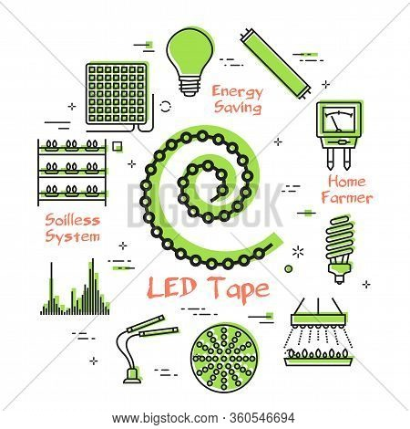 Vector Concept Of Hydroponic And Growth Led Light - Phyto Led Tape