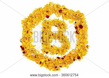 Letter B In Spring Flower Petal Hexagon. Marigold Petal Alphabet Isolated On White Background.