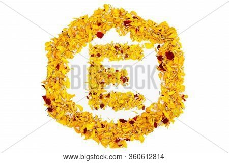 Letter E In Spring Flower Petal Hexagon. Marigold Petal Alphabet Isolated On White Background.
