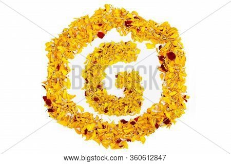 Letter G In Spring Flower Petal Hexagon. Marigold Petal Alphabet Isolated On White Background.