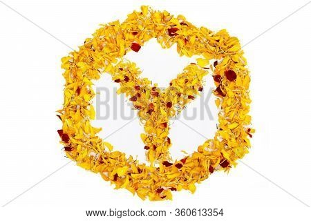 Letter Y In Spring Flower Petal Hexagon. Marigold Petal Alphabet Isolated On White Background.