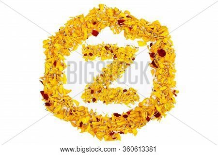 Letter Z In Spring Flower Petal Hexagon. Marigold Petal Alphabet Isolated On White Background.
