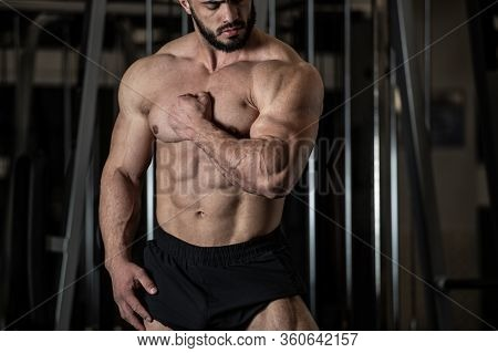 Handsome Young Bearded Man In Sport Trunks Showing Strong Muscle Of His Perfect Body Physique In Fit