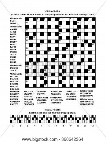 Puzzle Page With 19x19 Criss-cross (fill-in) Crossword Word Game (english Language) And Visual Puzzl