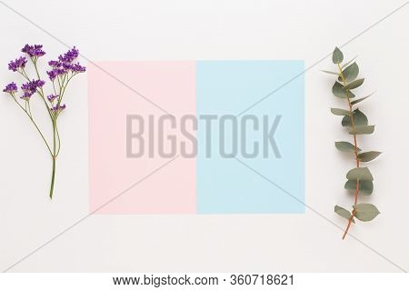 Flowers Composition. Paper Blank, Flowers, Eucalyptus Branches On Pastel  Background. Flat Lay, Top
