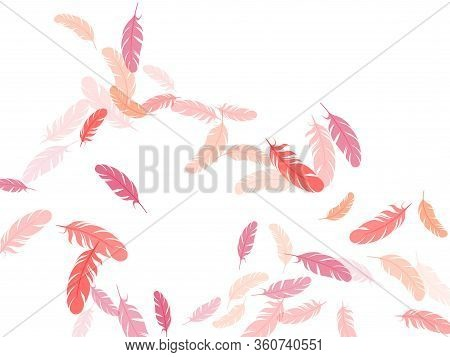 Trendy Pink Flamingo Feathers Vector Background. Falling Feather Elements Soft Vector Design. Decora