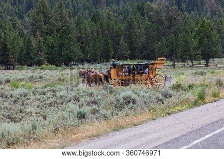 Yellowstone National Park, Usa - July 14 2014:  Tourists Riding On A Yellow Stagecoach Pulled By A T