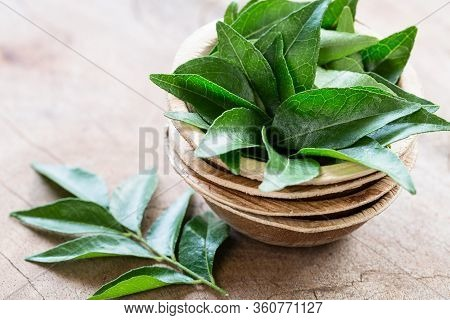 Fresh Curry Leaves In Coconut Bowl On Wooden Background