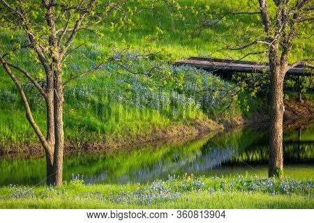 Idyllic Rural Scene Featuring A Meandering Stream Coursing Thrrough A Lush Filed Of Bluebonnets