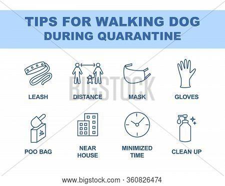 Tips For Walking Dog During Quarantine Coronavirus 2019-covid. Recommendations For Walking Outside L