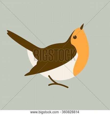Robin Red Breast Bird, Vector Illustration, Flat Style, Profile View