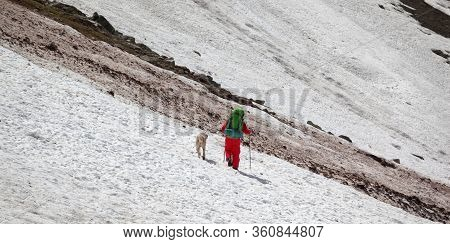 Hiker In Red With Dog On Snowy Glacier And Dirty Avalanche Trace At High Mountains. Panoramic View.