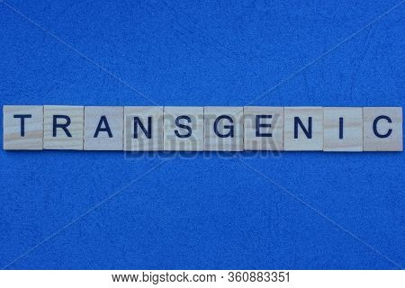 Word Transgenic Made From Gray Letters Lies On A Blue Background