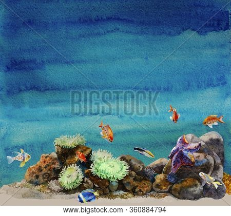 Watercolor Sea Bottom With Anemones, Urchins, Different Tropic Fishes And Sea Star In A Reef Colorfu