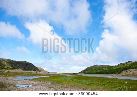 Landscape Of The Polar Summer Tundra