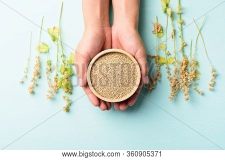 Organic Brown Quinoa Seed In A Wooden Bowl Holding By Hand With Quinoa Plant On Pastel Color Backgro