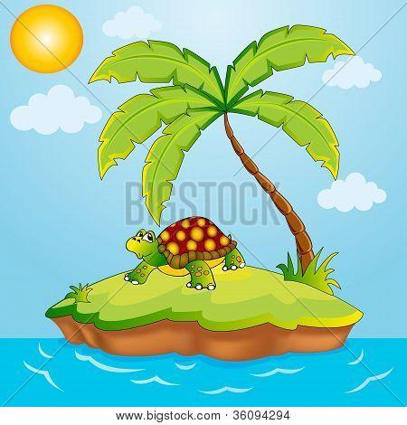 Zuidereiland met palmbomen en Terrapin