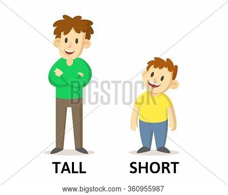 Words Tall And Short Flashcard With Cartoon Characters. Opposite Adjectives Explanation Card. Flat V