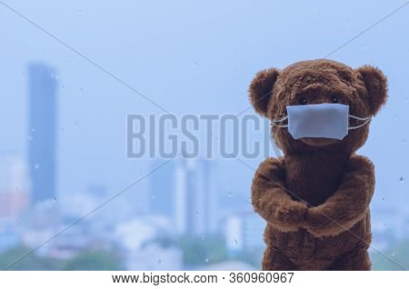 Teddy Bear Wearing Mask Standing At Window While Raining In Monsoon Season. Stay Home Away From Viru