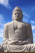 The Giant Buddha in Bodhgaya, Bihar, India. poster